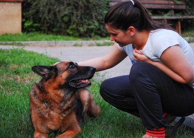 PETS STEP - briga o ljubimcima